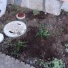花壇が崩れる原因が判明した!雨水浸透枡が問題だった。